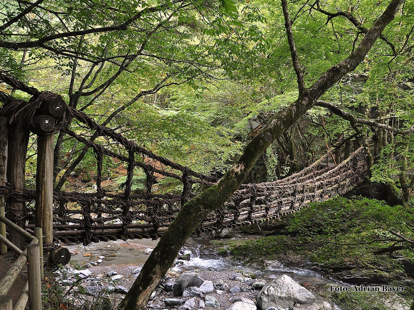 Šikoku - Oku Ija Kazura-baši (Fufu-baši)