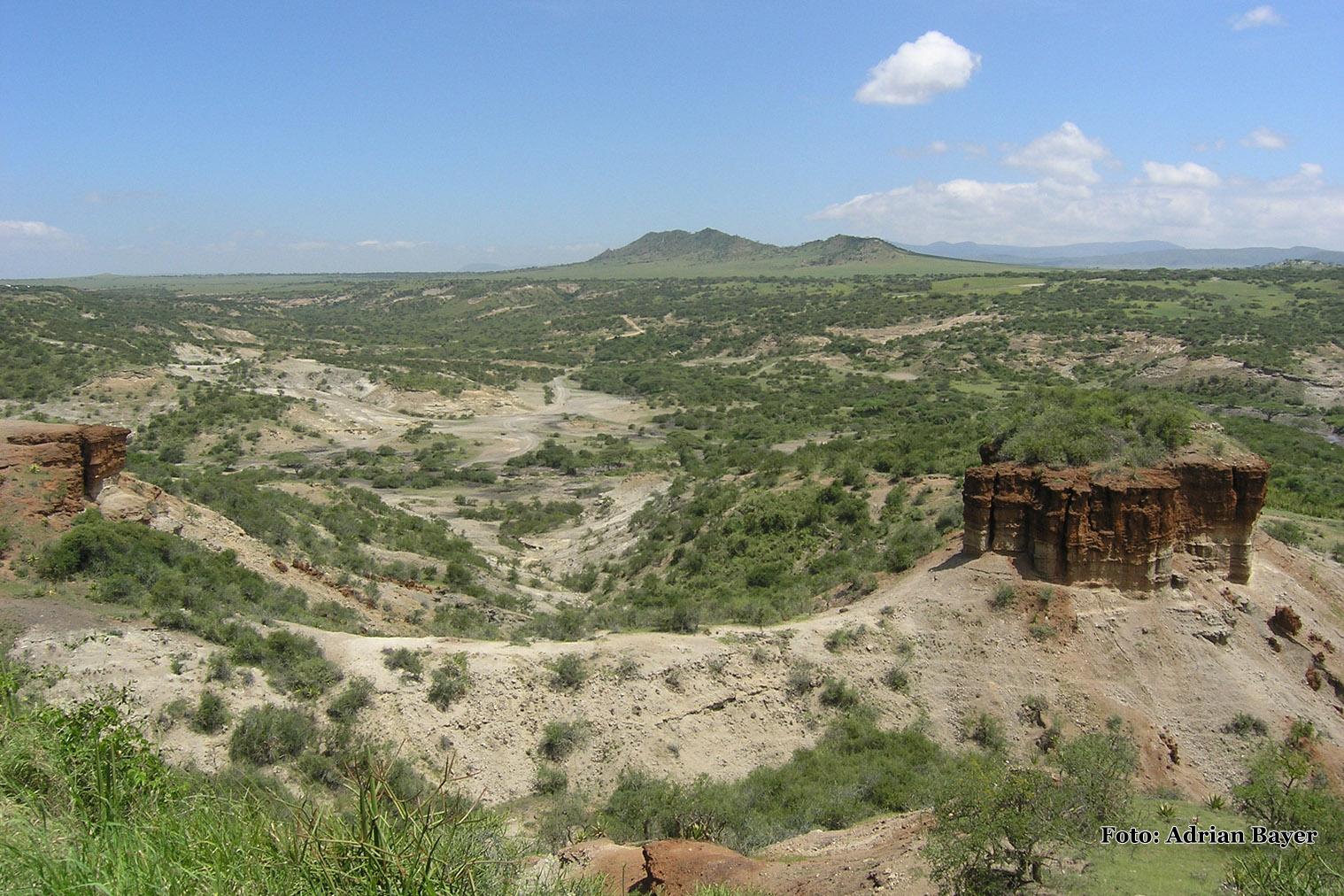 Olduvai Gorge