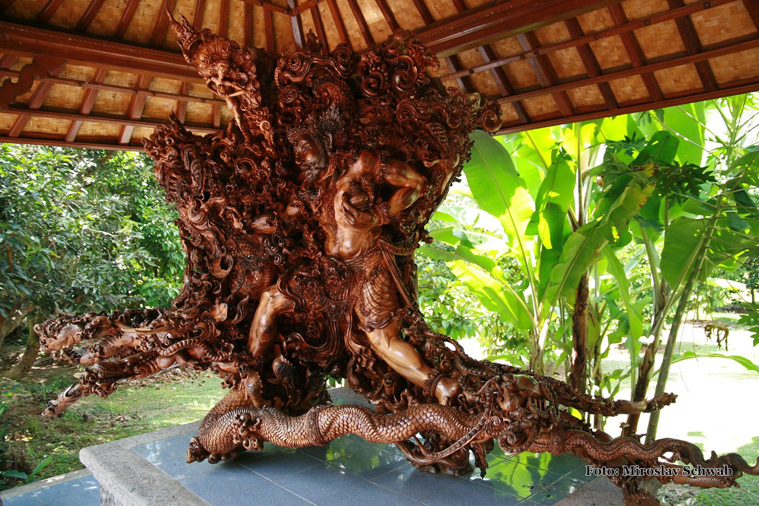Koreň stroma