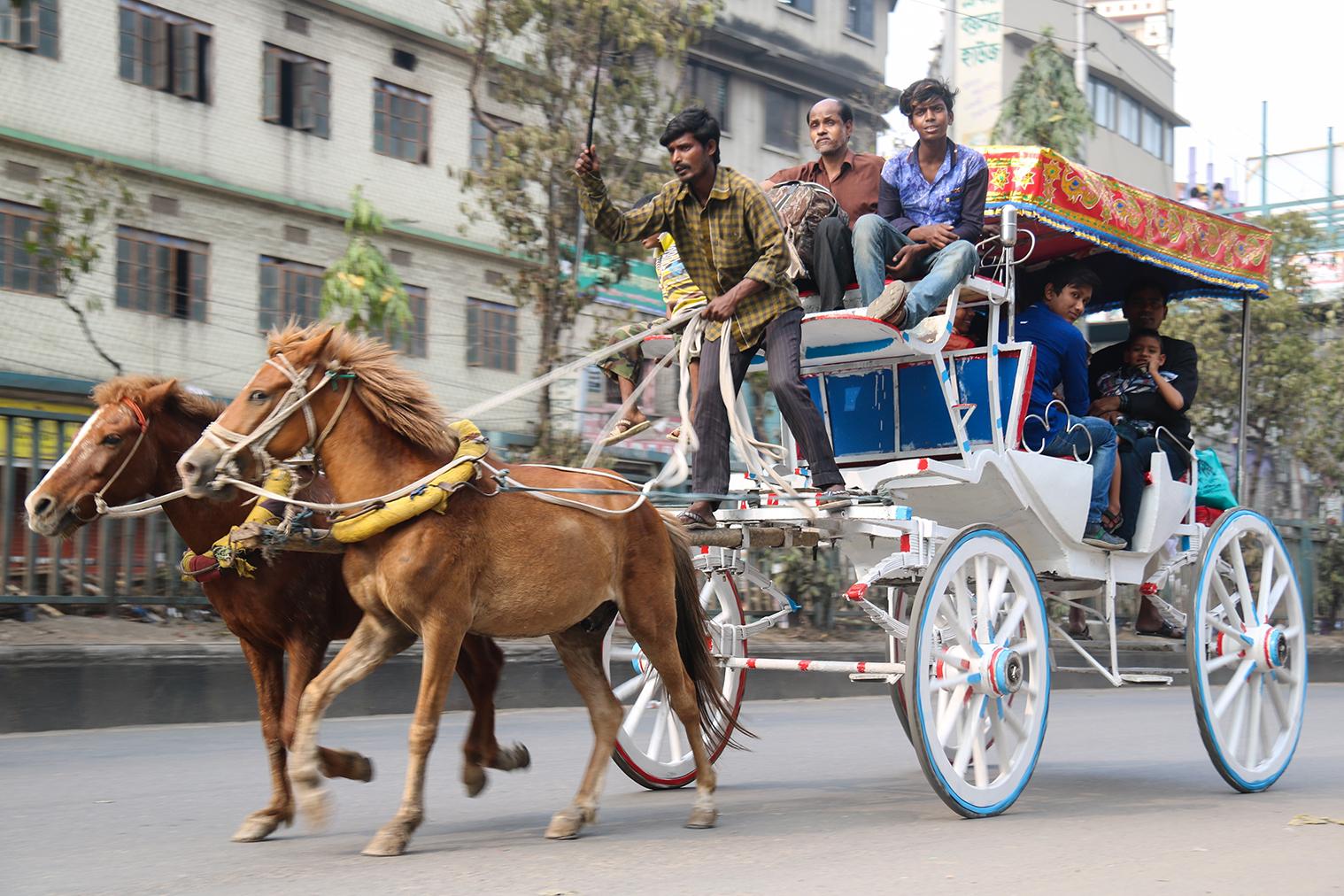 V uliciach Dháka stretnete všeličo