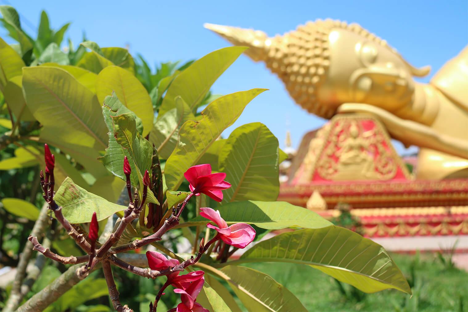 Ležiaci Budha vo Vientiane