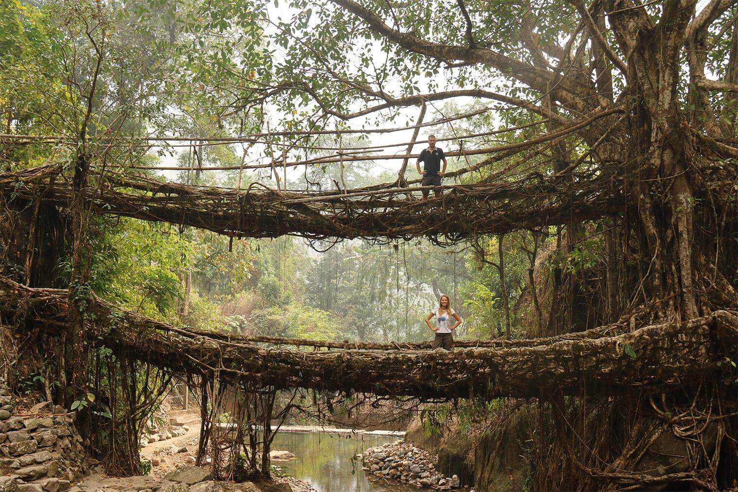 Koreňový most Doubledecker, severovýchodná India