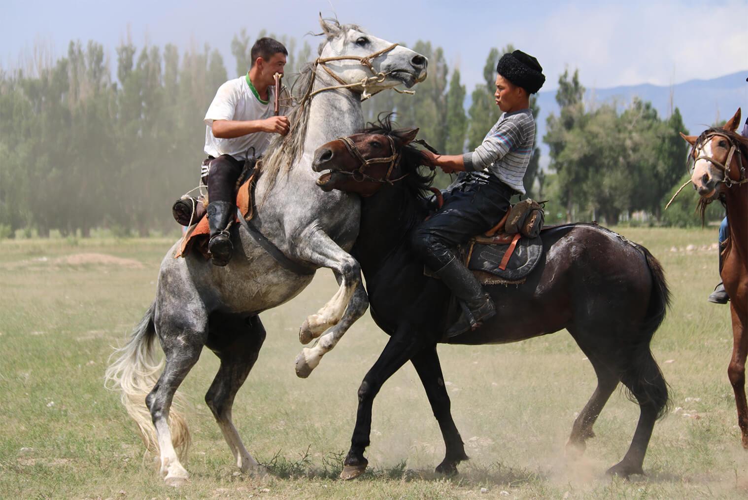 Zápasenie na koni