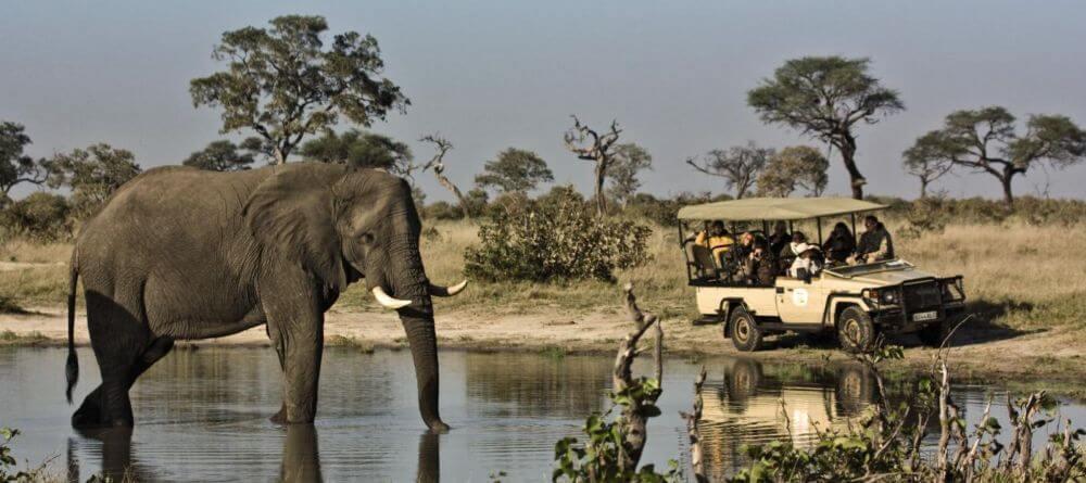 Kam ísť v Afrike na safari