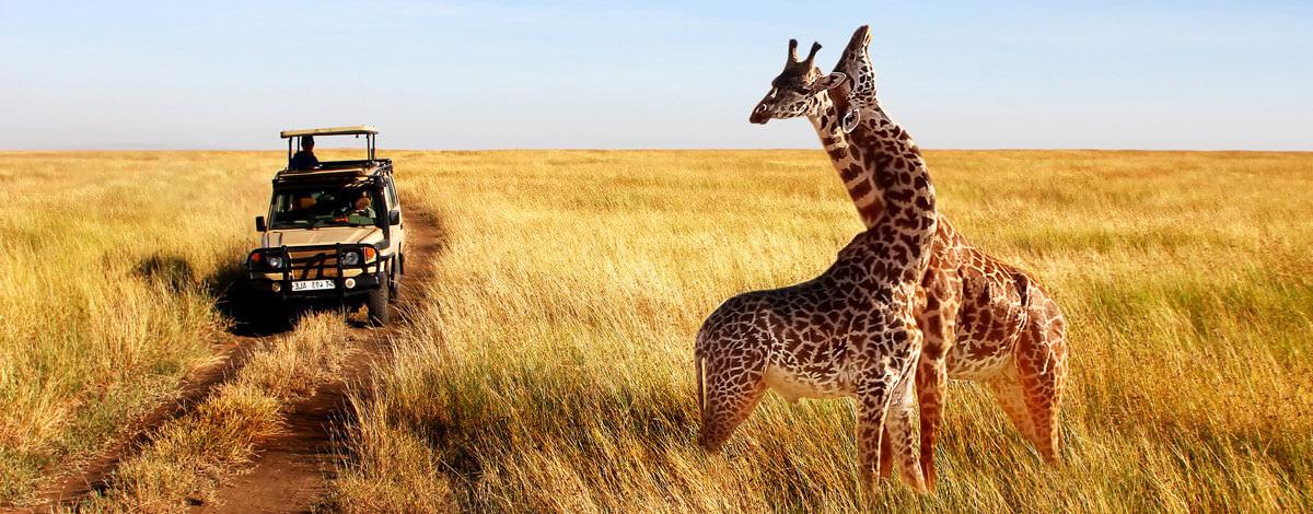 Keňa, Tanzánia, Zanzibar – cestovateľské rady, tipy a itinerár