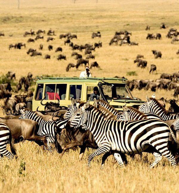 Ako si správne vybrať destináciu v Afrike